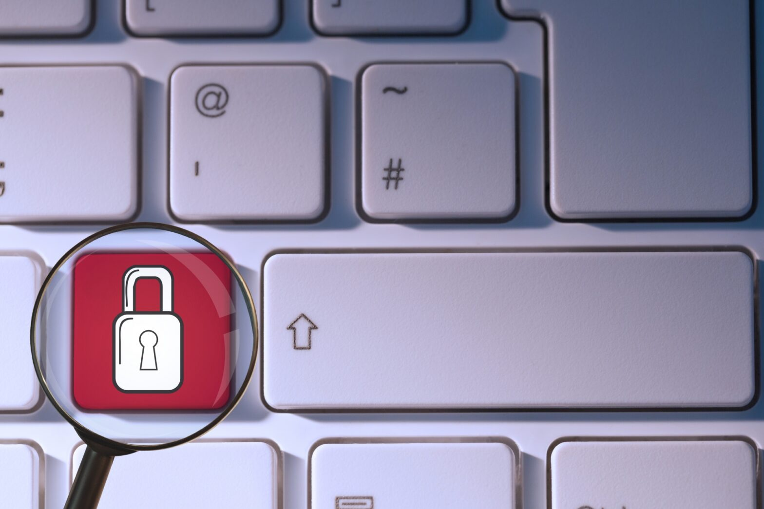 4 Steps To Effectively Safeguard Your Data